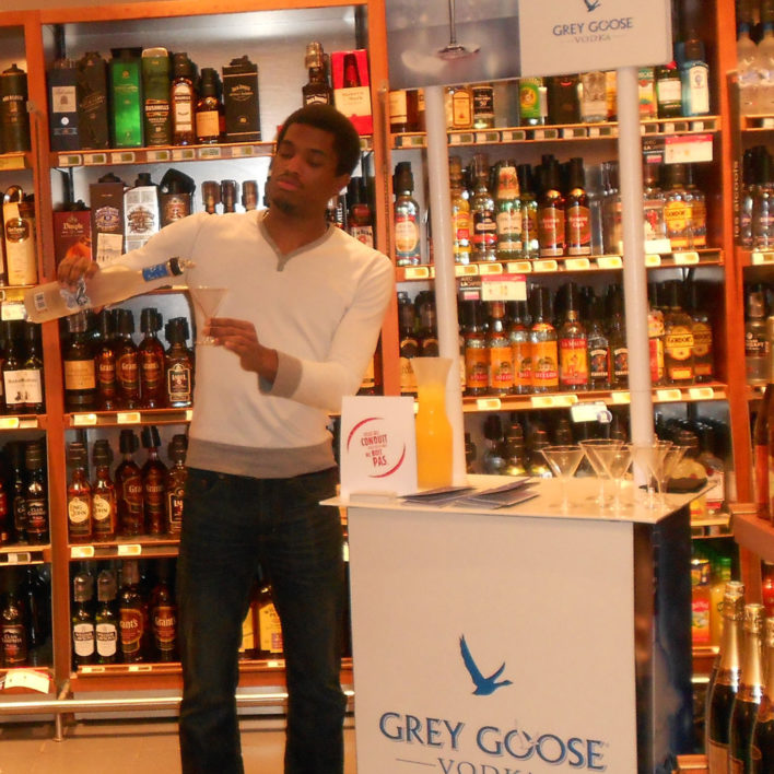 animation grey goose